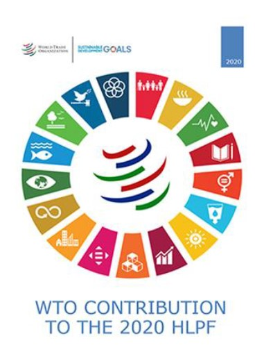 WTO contribution to the 2020 HLPF